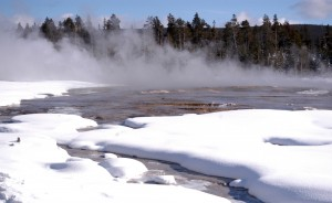 Relatively warm waters in the Lower Geyser Basin in Yellowstone National Park are clear of snow and ice despite a recent winter storm. (Ruffin Prevost/Yellowstone Gate - click to enlarge)