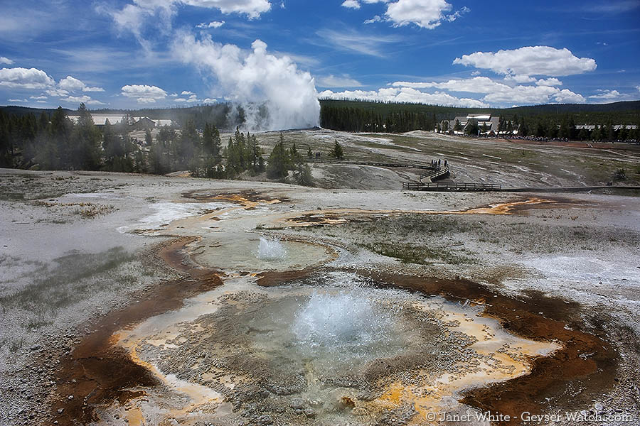 Anemone Geyser in Yellowstone National Park