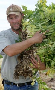Farmer Scott Richard of Cody, Wyo. supplies organic produce to local restaurants. (Elijah Cobb - click to enlarge)