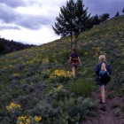 Yellowstone hikes — Lamar Valley