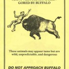 The National Park Service issues bright yellow flyers warning of bison gorings to every Yellowstone National Park visitor at entry. (NPS image - click to enlarge)