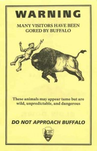 Buffalo gore warning yellow flyer