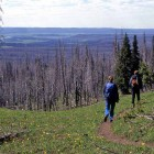 Hikers walk along a trail in Yellowstone National Park. (Jim Peaco - click to enlarge)