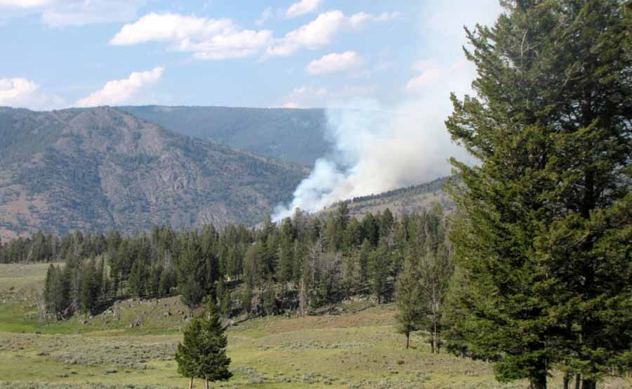 The Blacktail Fire in Yellowstone National Park covers about 15 acres and is burning near the Montana-Wyoming border between Mammoth Hot Springs and Tower Junction. (Inciweb photo - click to enlarge)