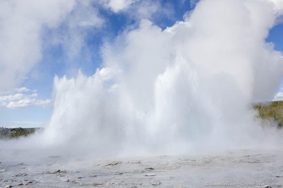 Morning Geyser (left) and Fountain Geyser (right) erupt together on June 5, 2013. (Janet White/GeyserWatch.com)