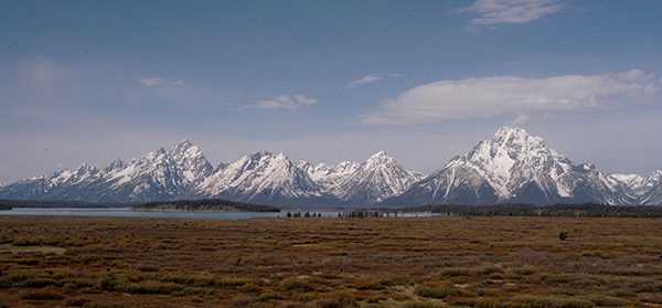 The Tetons rise in the distance beyond Willow Flats as viewed from Jackson Lake Lodge in Grand Teton National Park. (Ruffin Prevost/Yellowstone Gate)