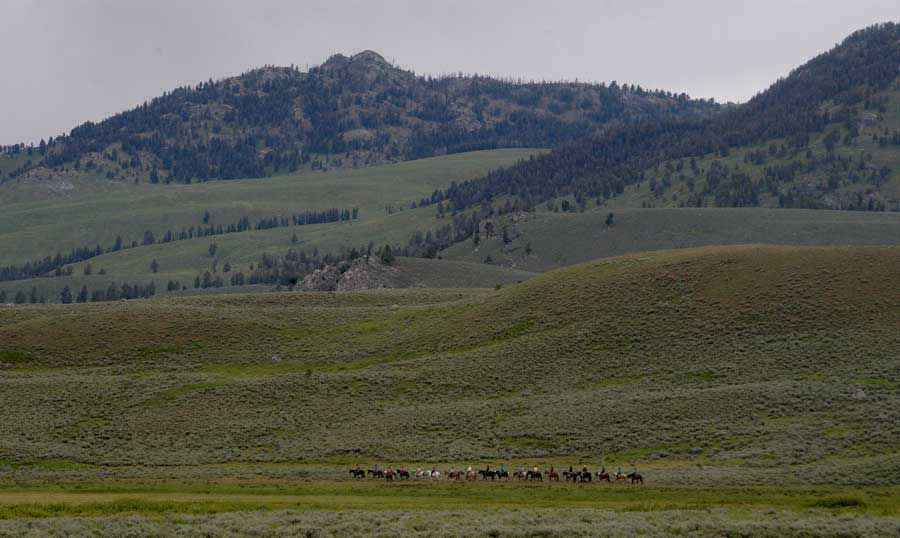 Riders on horseback move along a trail near the Roosevelt area in Yellowstone National Park. (Ruffin Prevost/Yellowstone Gate)
