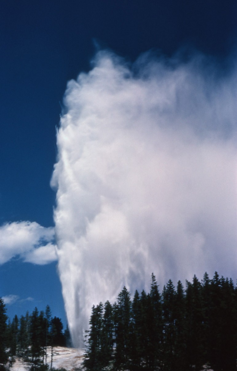 Steamboat Geyser in Yellowstone National Park, the tallest active geyser in the world, erupts in 1963.
