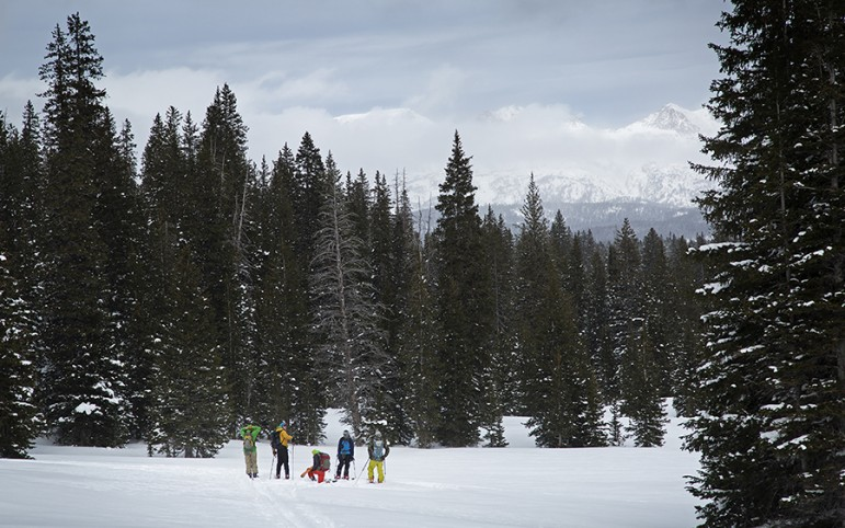 Participants ski through a snow-covered forest during an avalanche forecasting, survival and rescue class.