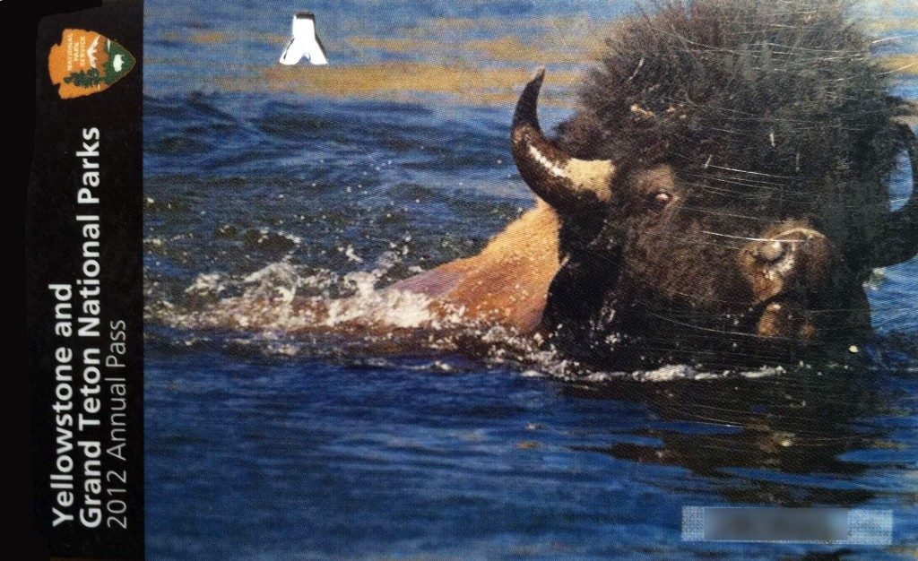 Yellowstone and Grand Teton national parks annual pass