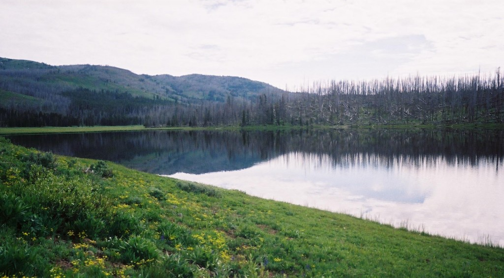 Cascade Lake is an easy hike from a roadside picnic area north of Canyon. You might catch trout in Cascade Lake or spot moose in the marshy areas nearby. (Ruffin Prevost/Yellowstone Gate - click to enlarge)