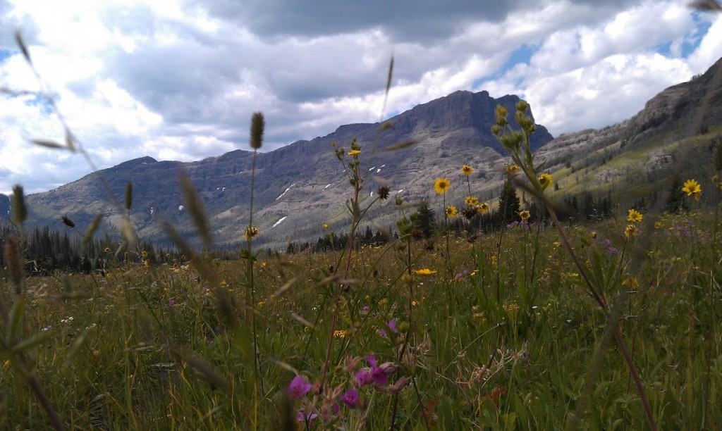 Bliss-Pass-as-seen-from-the-upper-end-of-Pebble-Creek