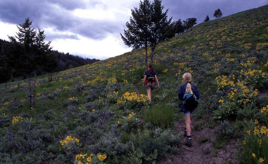 Yellowstone hikes — Rescue Creek Trail