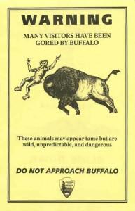 Buffalo gore warning yellow flyer