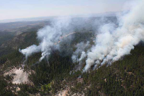The Dewdrop Fire in Yellowstone National Park was discovered July 29 burning in the backcountry nine miles southeast of Canyon. It spans approximately 63 acres.