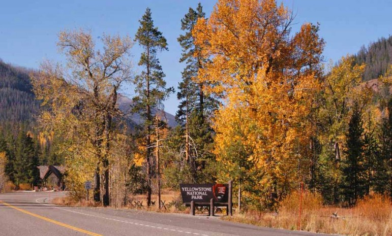 The East Gate of Yellowstone National Park is surrounded by colorful fall leaves.