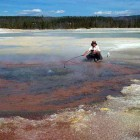 Researchers have used detailed genetic analyses to identify novel microbes found in the Norris Geyser Basin of Yellowstone National Park. (YNP photo)