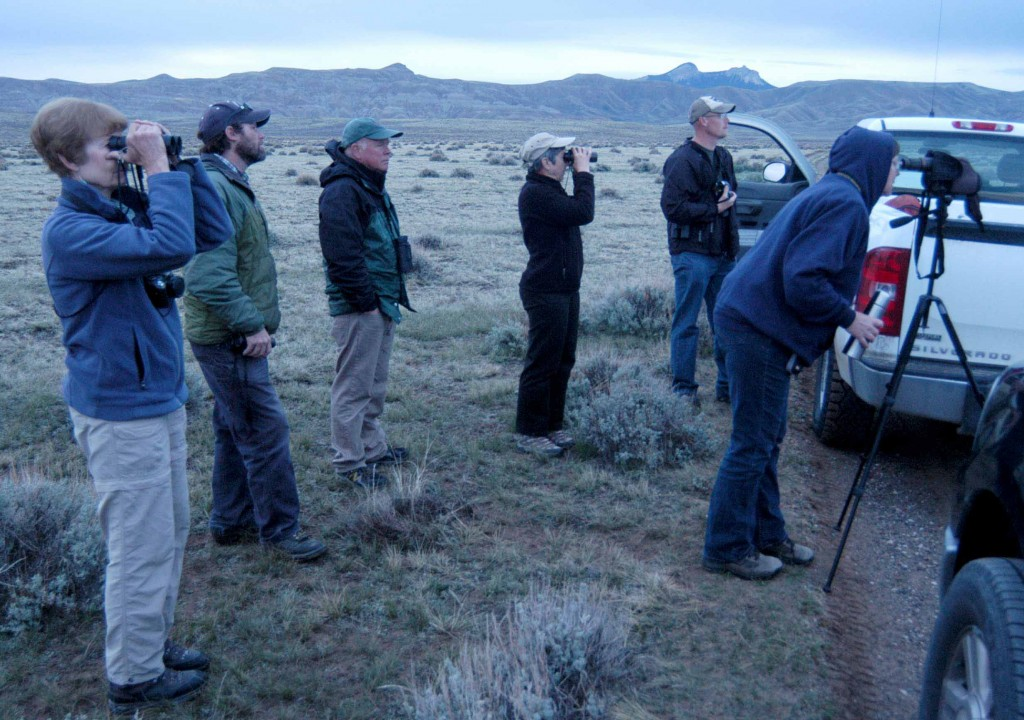 Destin Harrell, a wildlife biologist with the Bureau of Land Management, second from left, helps bird-watchers find sage grouse last week on a Spring Into Yellowstone excursion east of Cody, Wyo. (Ruffin Prevost/Yellowstone Gate)