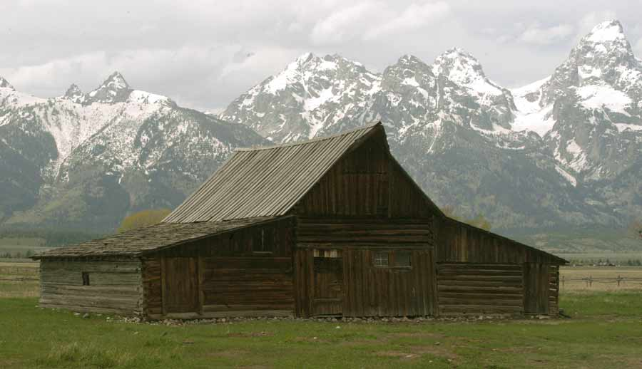 Spring grass grows in front of an old barn on Mormon Row in Grand Teton National Park. (Ruffin Prevost/Yellowstone Gate)