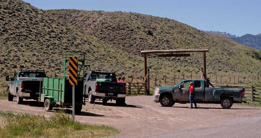 Specialists with the Wyoming Game and Fish Department begin efforts Thursday morning to trap a grizzly bear that attacked a man southwest of Cody, Wyoming. (Ruffin Prevost/Yellowstone Gate)