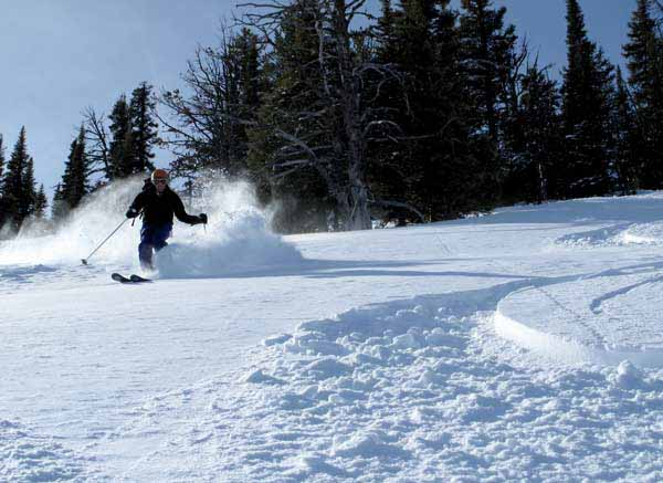 A skier makes fresh tracks in new powder at the Bridger Bowl Ski Area near Bozeman, Mont. (courtesy photo by Montana Office of Tourism)