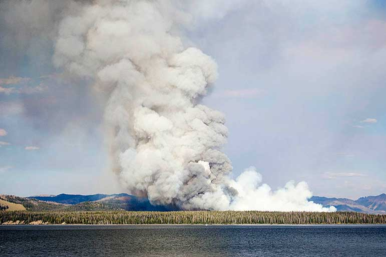 The Alder Fire burning in Yellowstone National Park has prompted the temporary closure of some backcountry campsites near Yellowstone Lake.