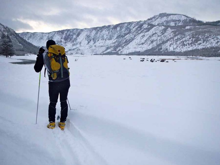 Derek Collins takes in the view while skiing across Yellowstone National Park.