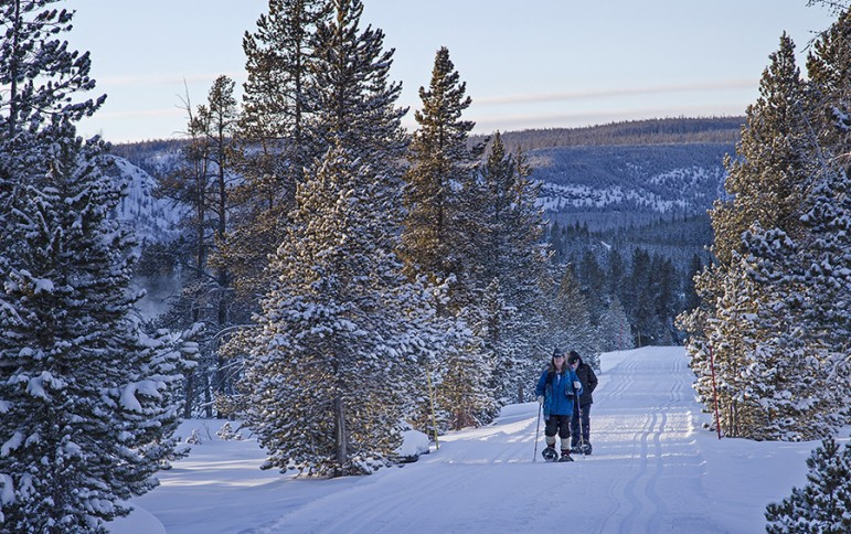Two people use snowshoes to walk around the Old Faithful area in Yellowstone National Park during  a February 2014 cold snap.