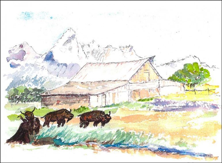 A watercolor by Margaret Taylor depicts bison near the T.A. Moulton Barn in Grand Teton National Park.